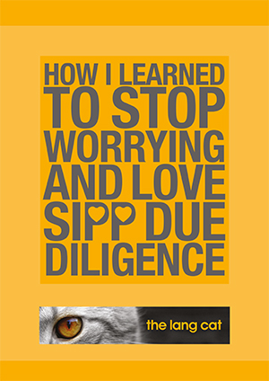 HOW-I-LEARNED-TO-LOVE-DUE-DILIGENCE-1-1
